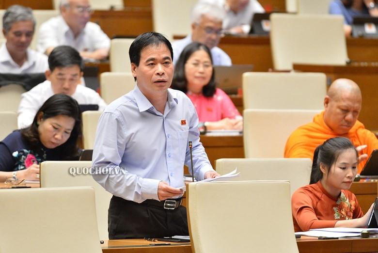 Quốc hội tranh cãi về quyền kiểm tra của cảnh sát môi trường - ảnh 2