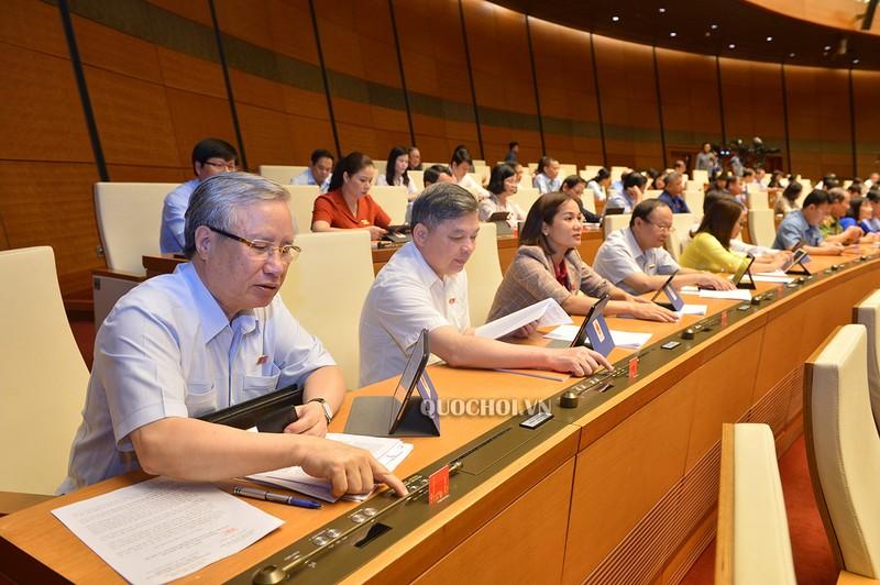 Quốc hội thông qua Nghị quyết lập Hội đồng Bầu cử Quốc gia - ảnh 1