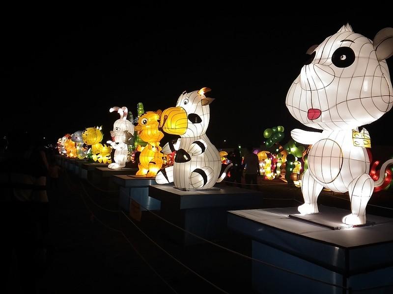 Giới trẻ Hà Nội 'phát cuồng' với lễ hội đèn lồng - ảnh 11