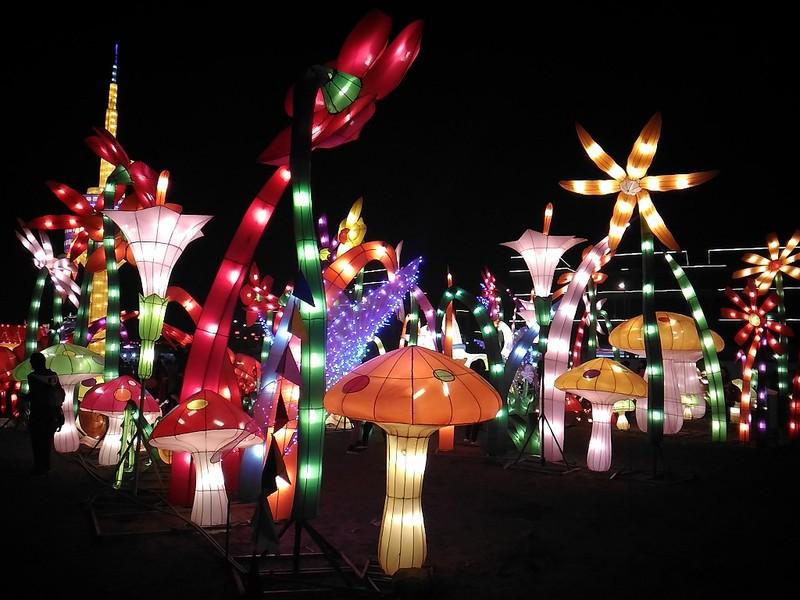 Giới trẻ Hà Nội 'phát cuồng' với lễ hội đèn lồng - ảnh 9