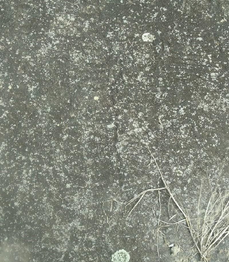 Thực hư bãi đá cổ Sa Pa bị 'kẻ xấu' tẩy xóa hoa văn - ảnh 7