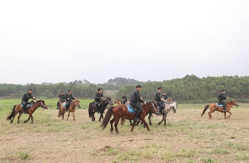 Hơn 100 con ngựa của kỵ binh Bộ Công an - ảnh 2