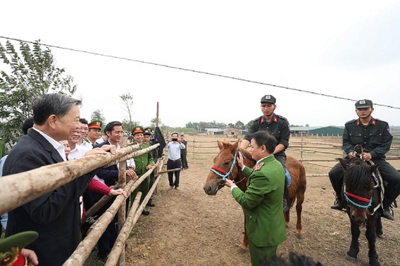 Hơn 100 con ngựa của kỵ binh Bộ Công an - ảnh 1