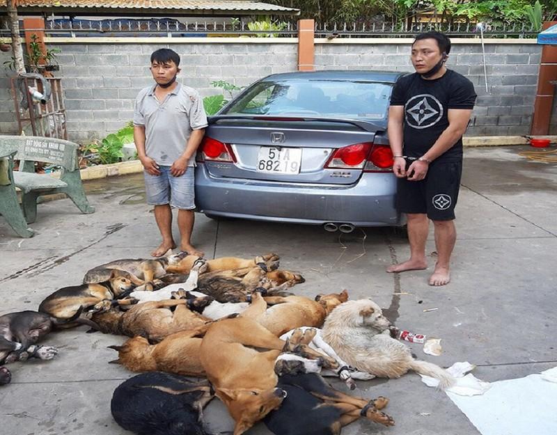 Bức xúc nạn trộm chó, cử tri đề xuất Bộ Công an tăng hình phạt - ảnh 1