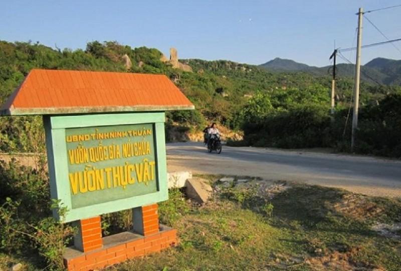 Thanh tra kiến nghị Thủ tướng kiểm điểm lãnh đạo Ninh Thuận - ảnh 1