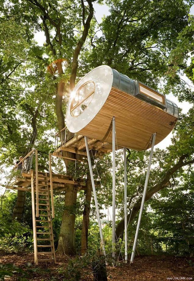 Độc đáo ngôi nhà trên cây có chức năng xả stress - ảnh 1