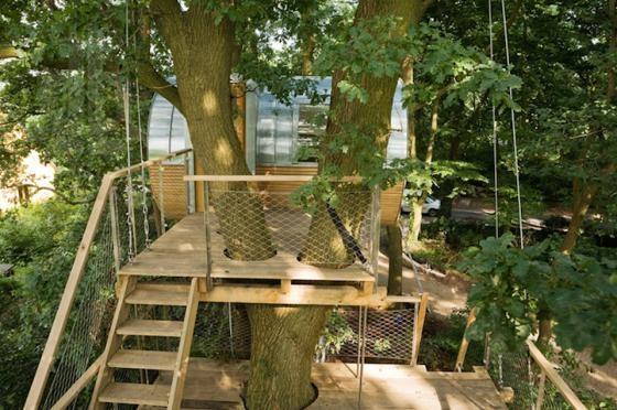 Độc đáo ngôi nhà trên cây có chức năng xả stress - ảnh 4
