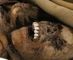 Chết ngất khi phát hiện xác ướp 900 năm mỉm cười - ảnh 5