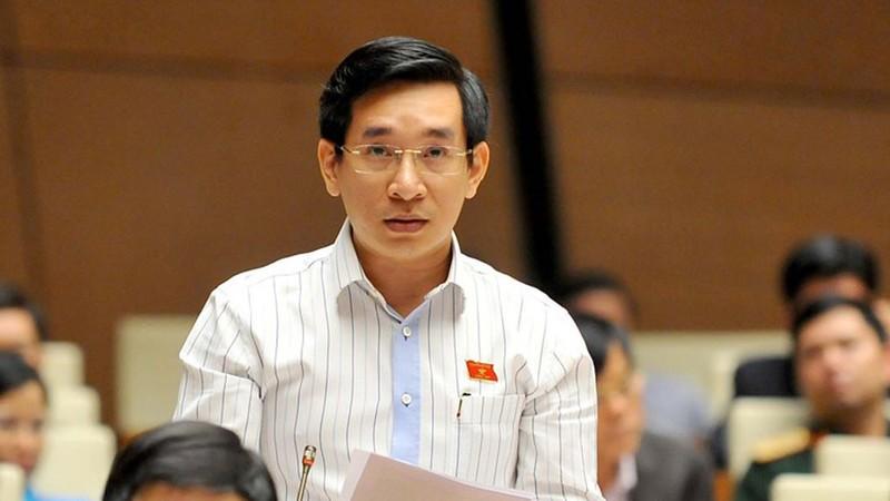 ĐB Nguyễn Văn Cảnh tiếp tục nói về đấu giá biển xe đẹp - ảnh 1