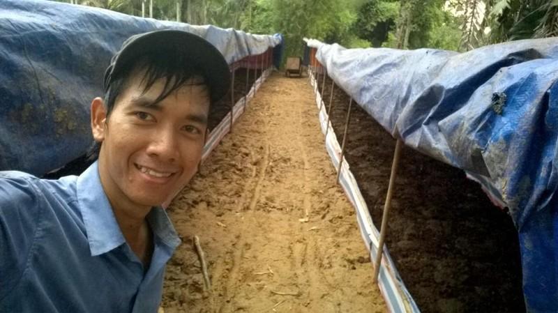 Giấc mơ phân trùn quế và nông nghiệp hữu cơ bền vững - ảnh 1