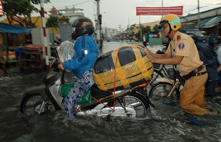Mưa lớn, Sài Gòn lại ngập nước, cây đổ  - ảnh 1
