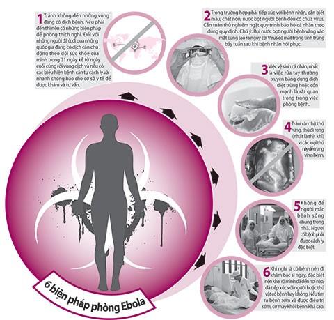 Cẩm nang phòng ngừa lây nhiễm Ebola - ảnh 1