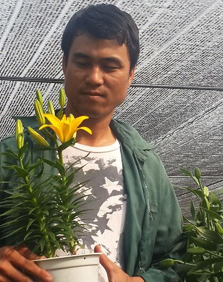 Mang vườn hoa Hà Lan về Sa Đéc - ảnh 2