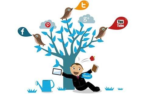 Dân trí và mạng xã hội  - ảnh 1