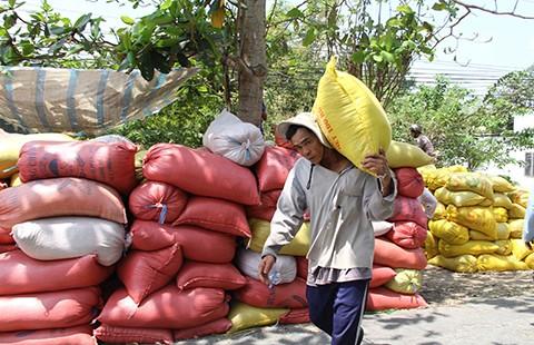 Gạo Việt Nam mang thương hiệu… Trung Quốc - ảnh 1