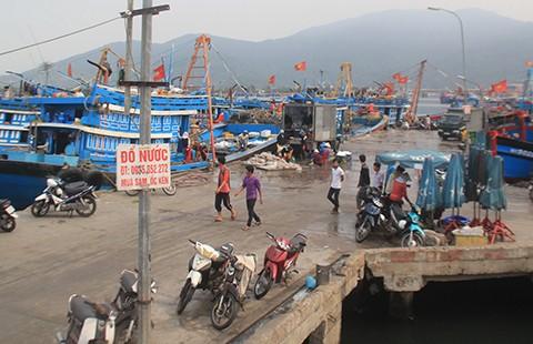 Trộm cắp, bảo kê ở cảng cá Đà Nẵng - ảnh 1