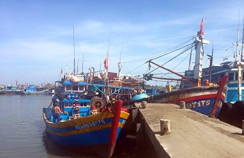 Xây dựng đề án hỗ trợ cho ngư dân 4 tỉnh miền Trung - ảnh 1