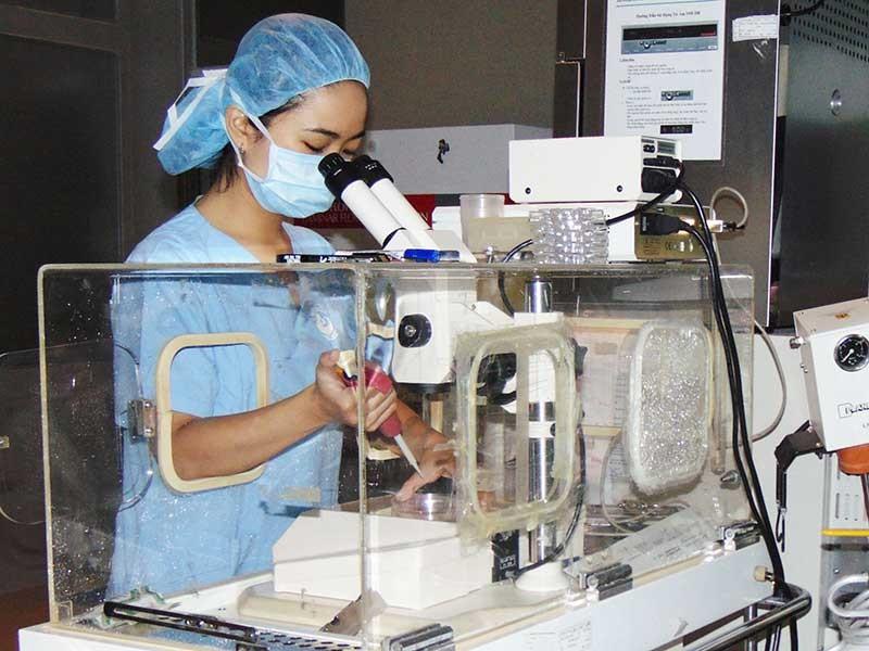 7 bé ở TP.HCM đã ra đời nhờ mang thai hộ - ảnh 1