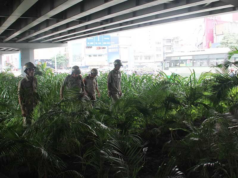 Công khai hút, chích giữa Sài Gòn - Bài cuối: Khó dẹp!  - ảnh 1