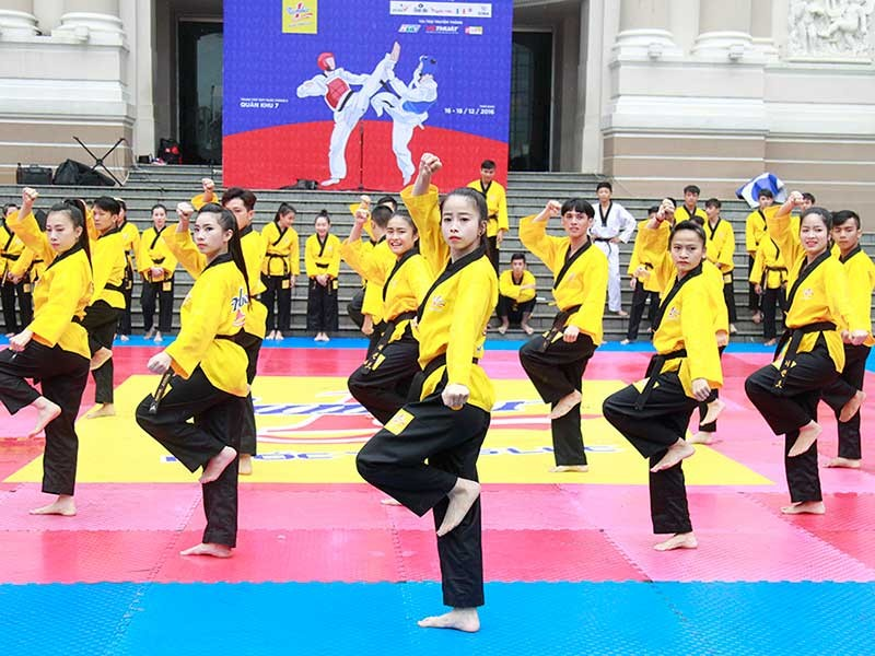Thế giới xem trọng Taekwondo Việt Nam - ảnh 1