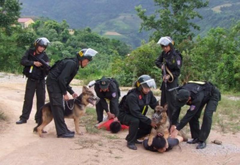 Bộ Công an mở cao điểm tấn công tội phạm băng nhóm - ảnh 1
