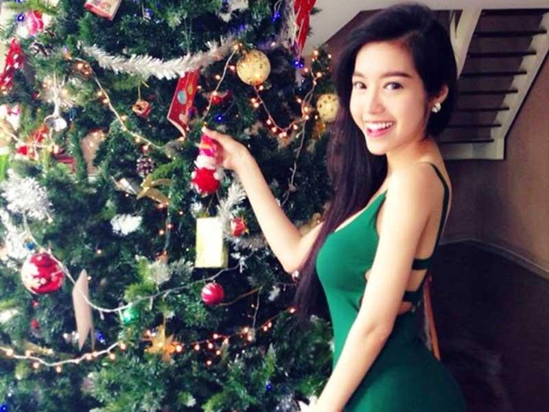 Nguồn gốc của cây trang trí Giáng sinh - ảnh 1