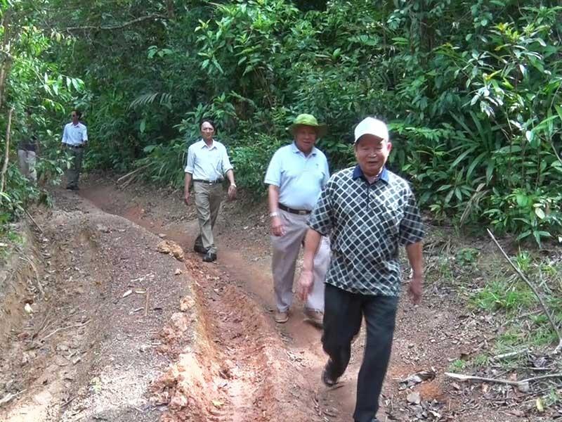 Cựu lãnh đạo Phú Yên: Cần dừng ngay việc phá rừng! - ảnh 1