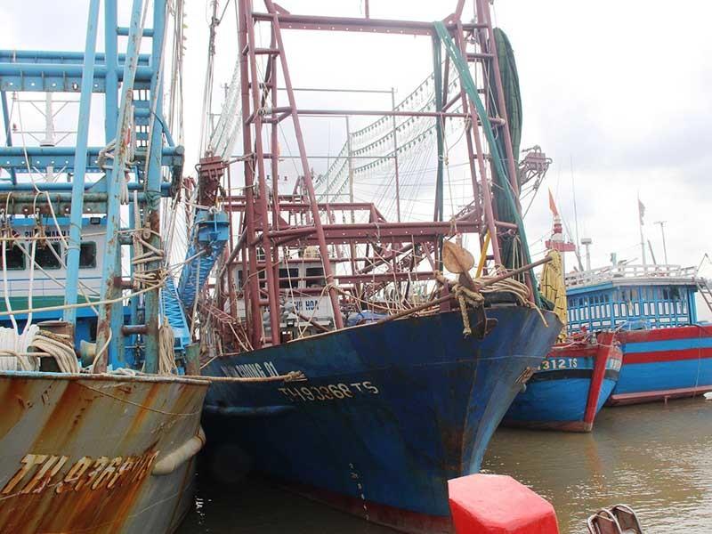 Thanh Hóa: Nhiều tàu vỏ thép đang nằm bờ - ảnh 1