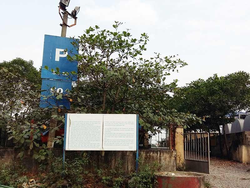 Bến, cảng ở Quảng Ninh thoát quản lý hai cấp - ảnh 1