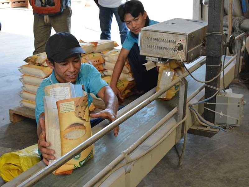 Gạo Việt tự hại nhau, thương nhân Trung Quốc hưởng lợi - ảnh 1