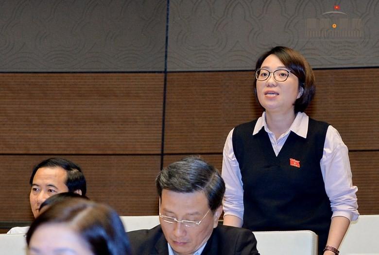 GĐ Công an Nghệ An phản pháo ý kiến ĐB Minh Hiền - ảnh 2