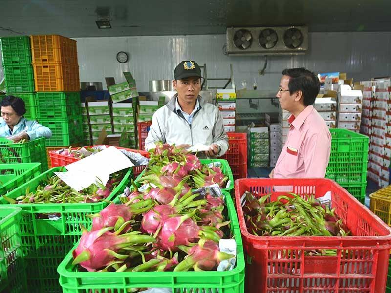 Hàng Việt nhộn nhịp xuất ngoại  đầu năm - ảnh 1