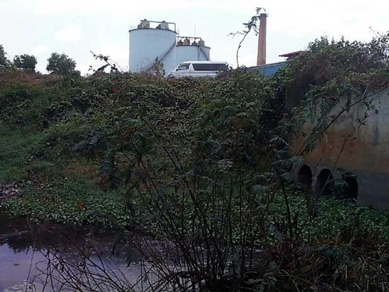 Ô nhiễm ở Đồng Nai, Bình Thuận 'đau đầu' - ảnh 1