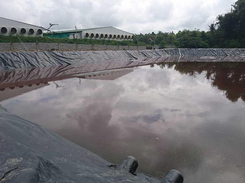 Ô nhiễm ở Đồng Nai, Bình Thuận 'đau đầu' - ảnh 2