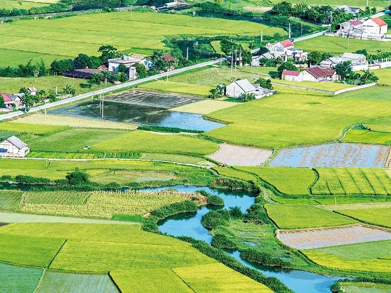 Con đường thiên lý của nước Việt - ảnh 1