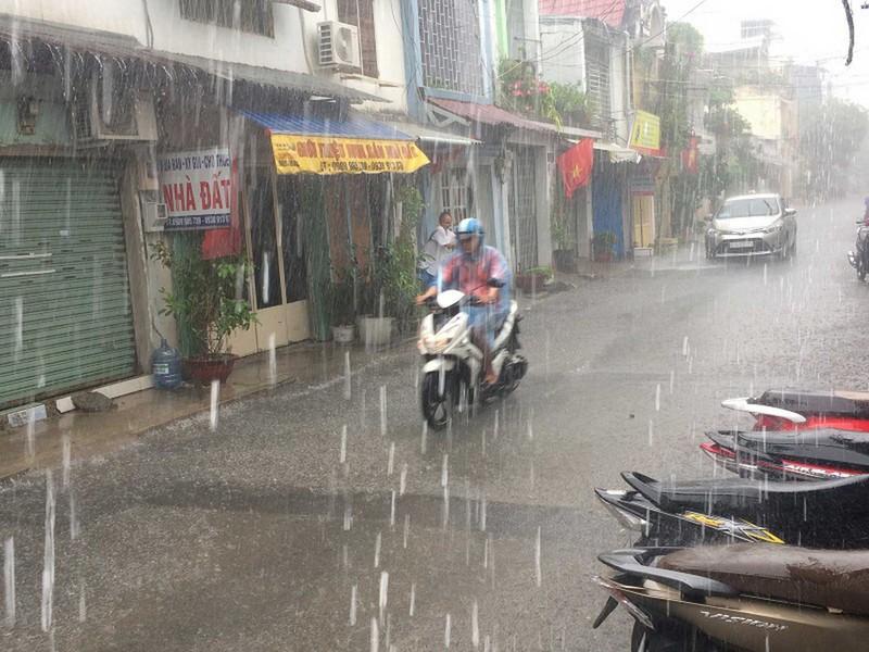 Cơn mưa 'vàng' giải nhiệt cho Sài Gòn - ảnh 1