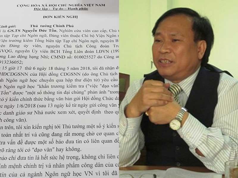 Giáo sư bị tố đạo văn Nguyễn Đức Tồn nói gì? - ảnh 1
