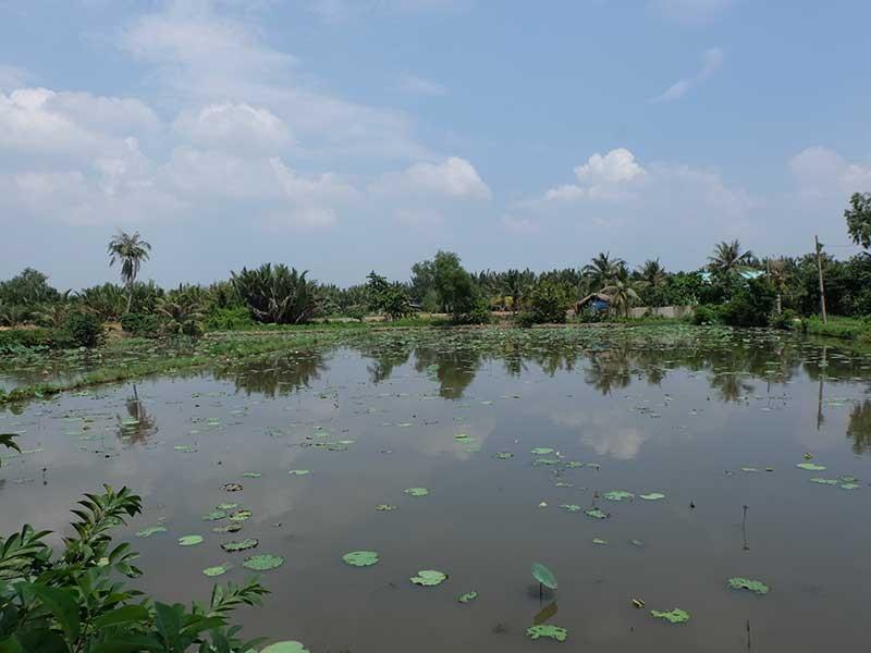 Chuyển đổi 26.000 ha đất nông nghiệp: Dân sẽ được lợi! - ảnh 2