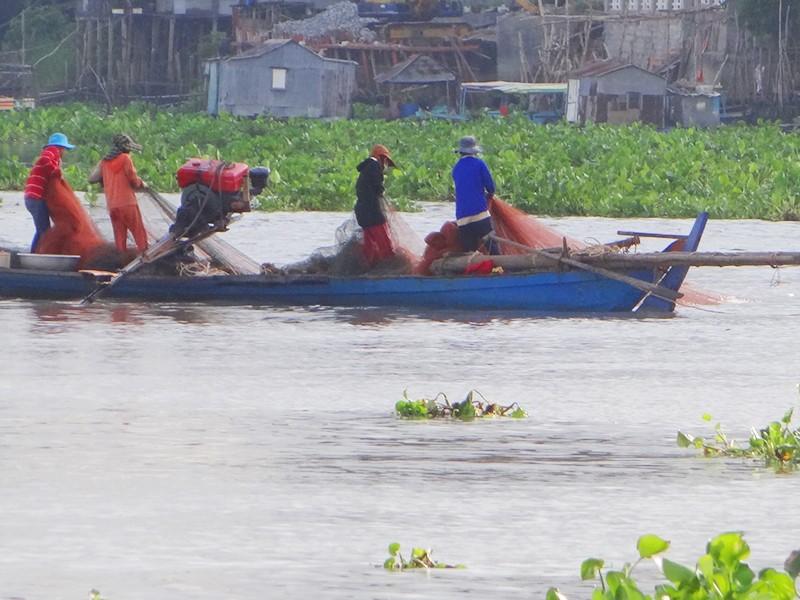 Thủy điện đe dọa nguồn sống đồng bằng sông Cửu Long - ảnh 2