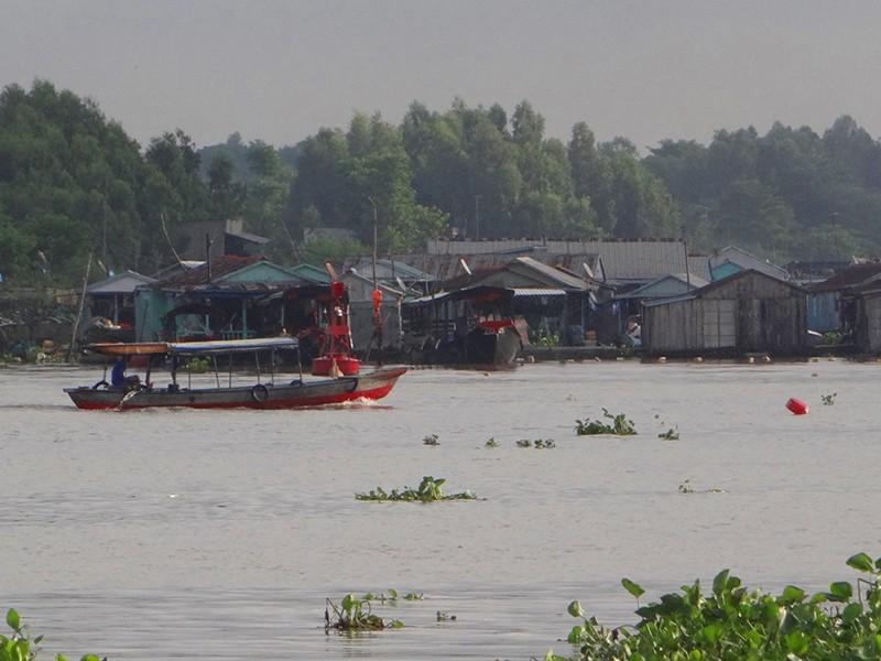 Thủy điện đe dọa nguồn sống đồng bằng sông Cửu Long - ảnh 1
