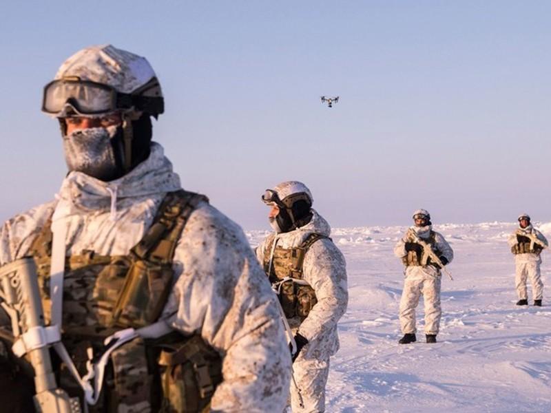 Bắc Cực trước nguy cơ xung đột - ảnh 1
