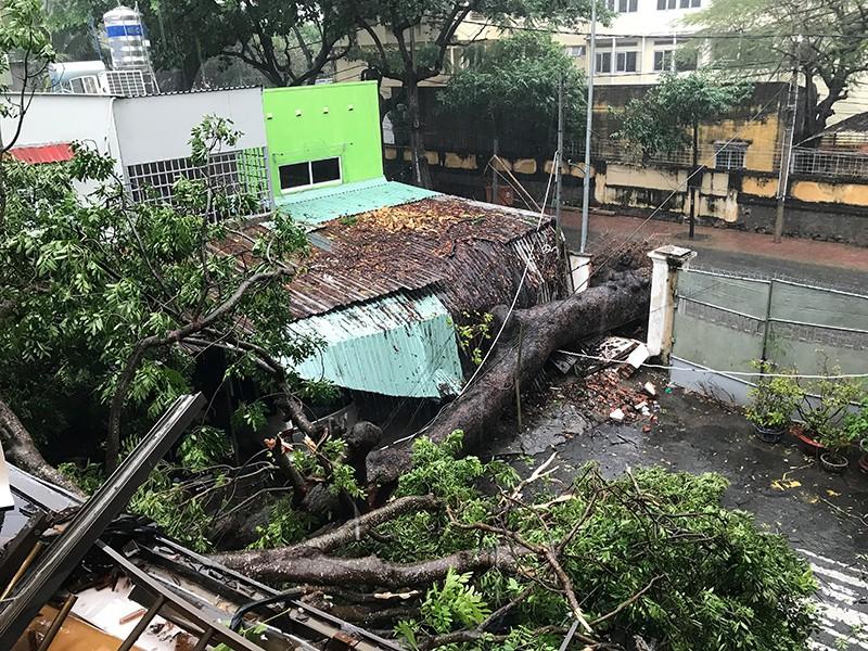 TP.HCM ngập nặng vì bão số 9 - ảnh 2