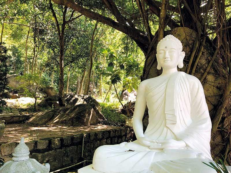 Rời Sài Gòn, về chùa trong mây núi - ảnh 3