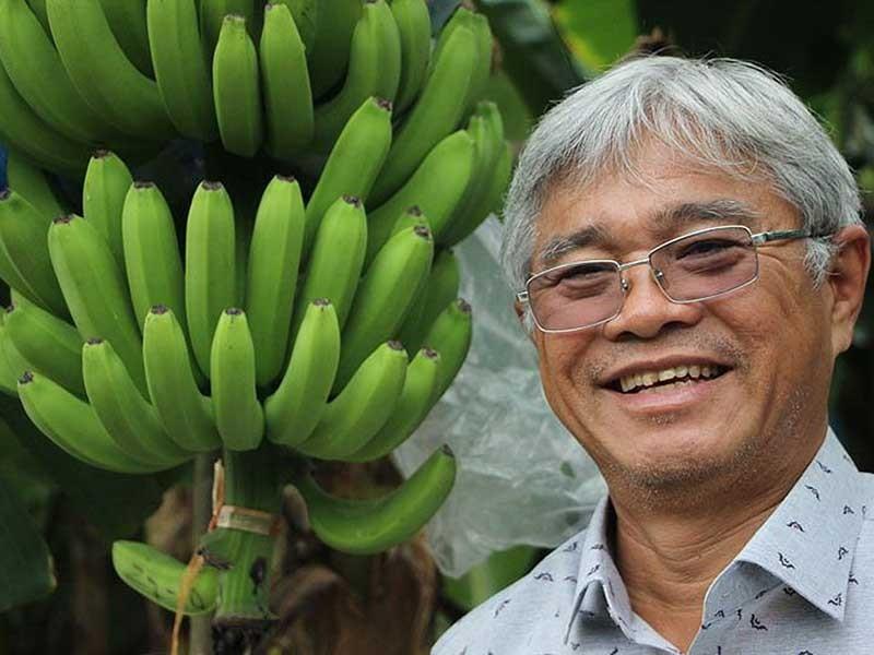 Ông trùm chuối Việt: 'Tôi khởi nghiệp tới 25 lần!' - ảnh 1