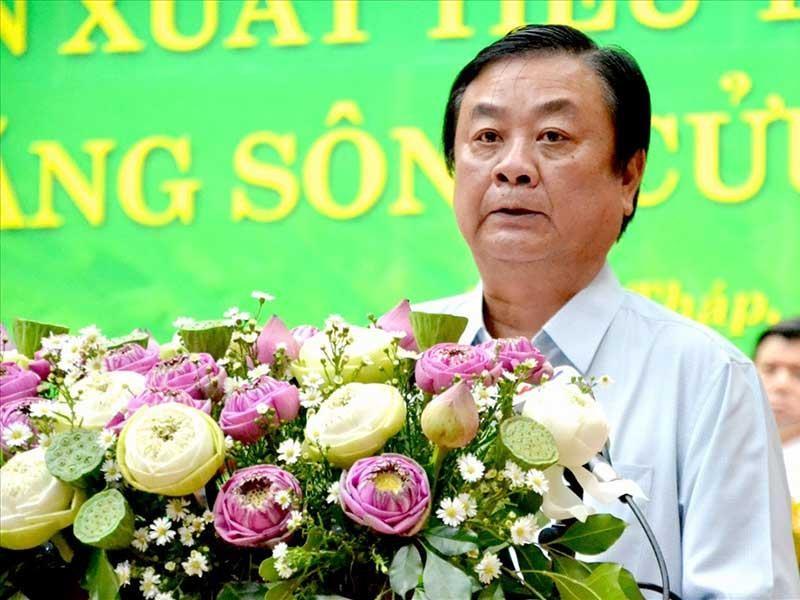 'Mới gió heo may, hạt gạo Việt đã lăn ra bệnh' - ảnh 1