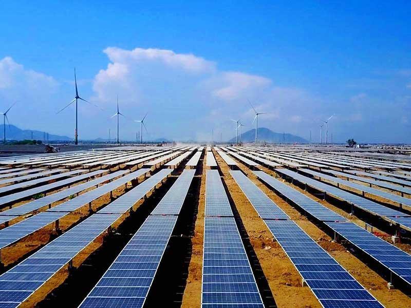 Bình Thuận phản ứng giá mua điện mặt trời quá thấp - ảnh 1