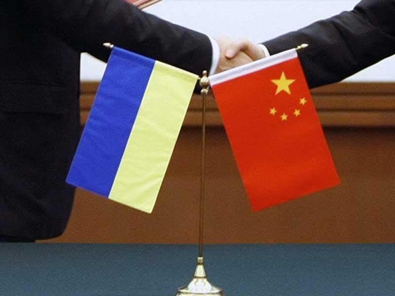 Có thể Trung Quốc sẽ thay Nga 'vực dậy' Ukraine - ảnh 1