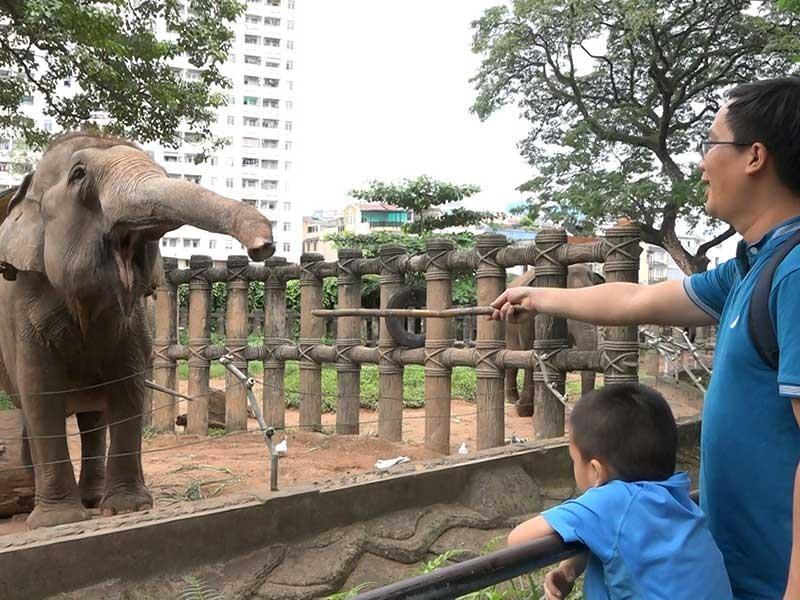 Những điều đáng sợ trong vườn thú - ảnh 1