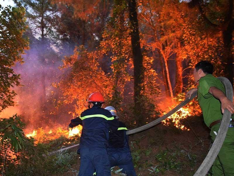 Hơn 15.000 người dập cháy rừng ở Hà Tĩnh, Nghệ An - ảnh 2