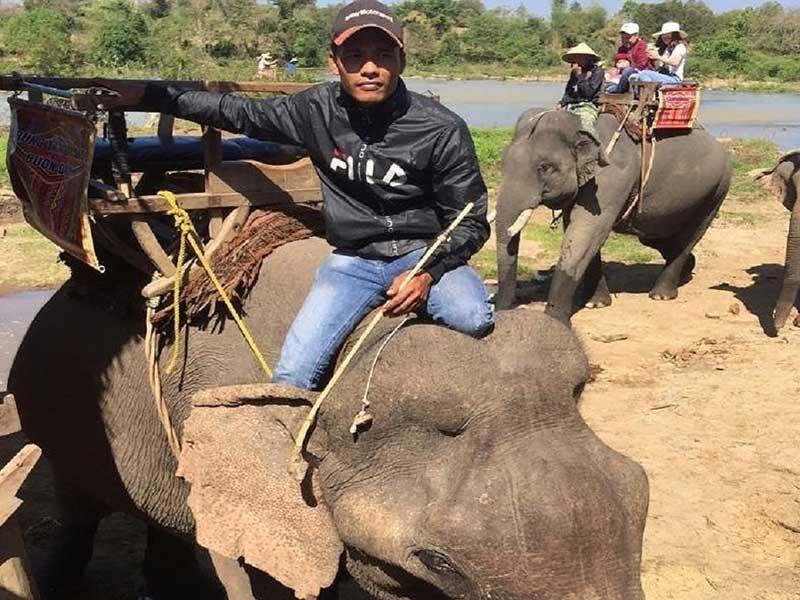 Du lịch cưỡi voi, hãy dừng ngay khi còn kịp! - ảnh 1